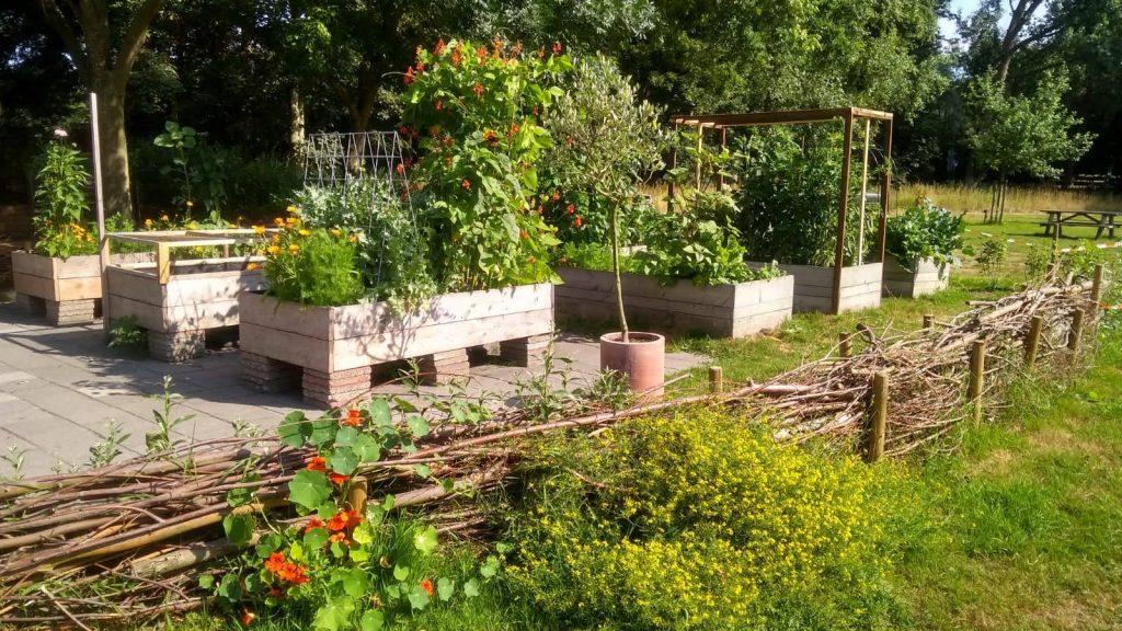 De Eetbare tuin en de Pluktuin